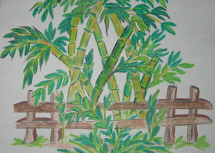 Bamboo Greeting Card featuring the drawing Bamboo by Deepa Padmanabhan