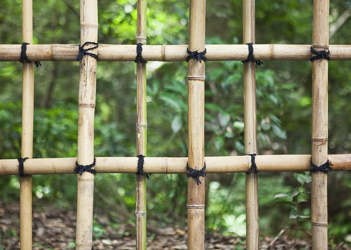 No People Greeting Card featuring the photograph Bamboo Fence Detail Meiji Jingu Shrine by Bryan Mullennix