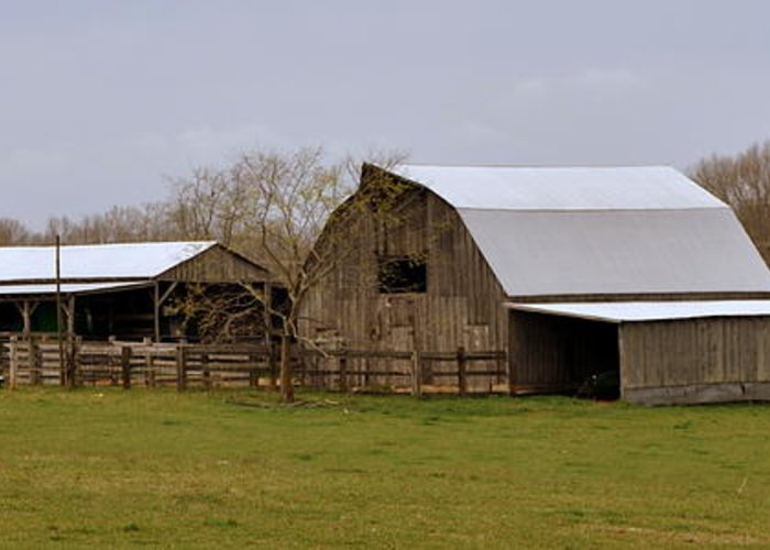 Barn Greeting Card featuring the photograph Barn In The Ozarks by Marty Koch