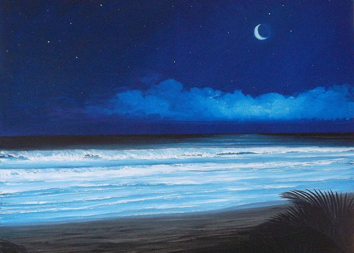 Tropical Night On Beach Greeting Card featuring the painting Barrys Beach by Delia Birnhak Swenson