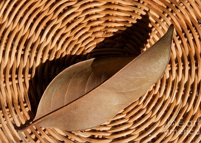 Brown Greeting Card featuring the photograph Basket Of Brown by Dan Holm