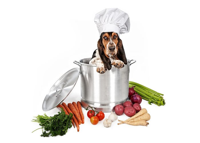 Dog Greeting Card featuring the photograph Basset Hound Dog In Big Cooking Pot by Susan Schmitz