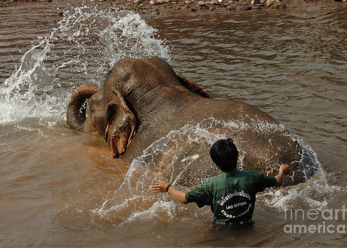Reverse Greeting Card featuring the photograph Bath Time In Laos by Bob Christopher