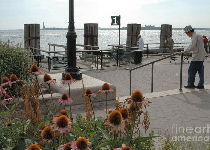 Battery Park Greeting Card featuring the photograph Battery Park by Mark Gilman