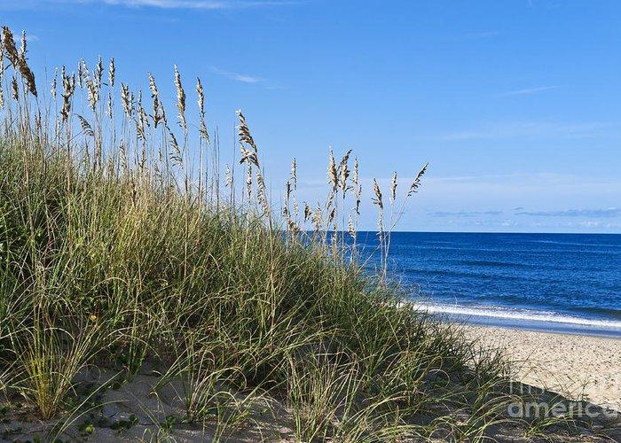 Atlantic Ocean Greeting Card featuring the photograph Beach Dunes. by John Greim
