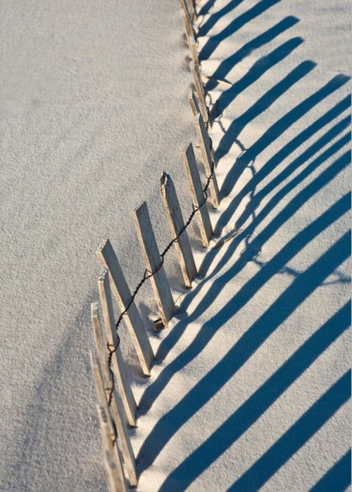 Beach Greeting Card featuring the photograph Beach Graphic by Janice M LeCocq