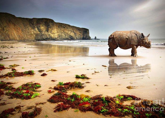 Africa Greeting Card featuring the photograph Beach Rhino by Carlos Caetano