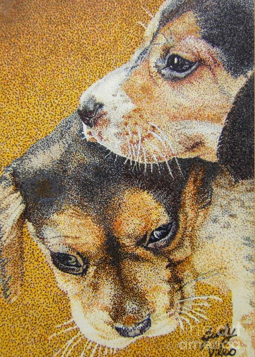 Puppies Greeting Card featuring the drawing Beagle Puppies by Judy Skaltsounis