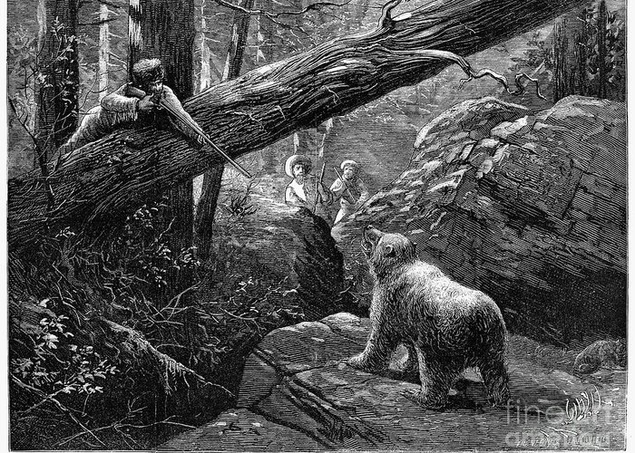 1876 Greeting Card featuring the photograph Bear Hunt, 1876 by Granger