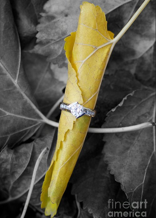Solitaire Diamond Greeting Card featuring the photograph Beautiful Engagement by Brooke Roby