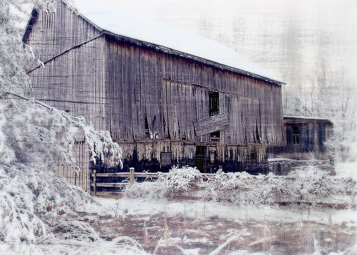 Barn Greeting Card featuring the photograph Behind The Barn by Kathy Jennings