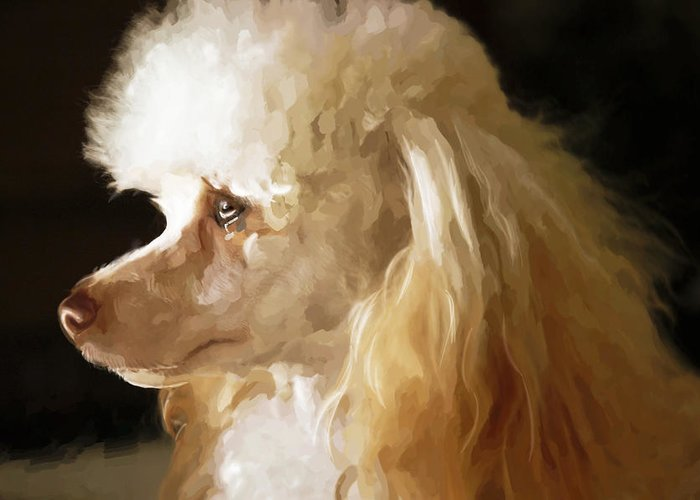 Dogs Greeting Card featuring the digital art Bella by Mickey Clausen