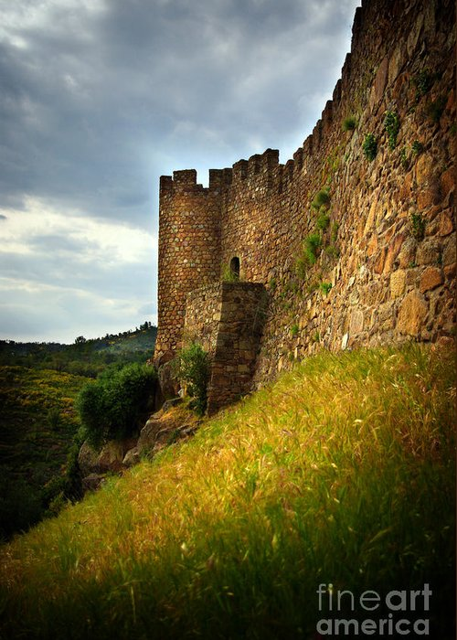 Ages Greeting Card featuring the photograph Belver Castle by Carlos Caetano
