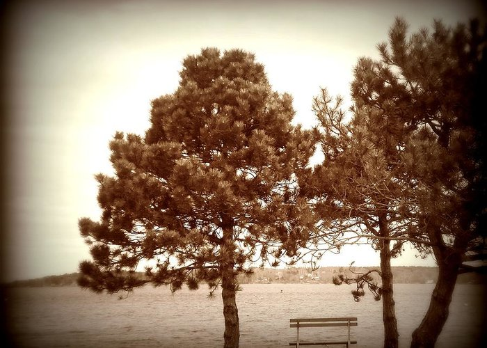 Bench Greeting Card featuring the photograph Bench By The Sea by Christy Beal