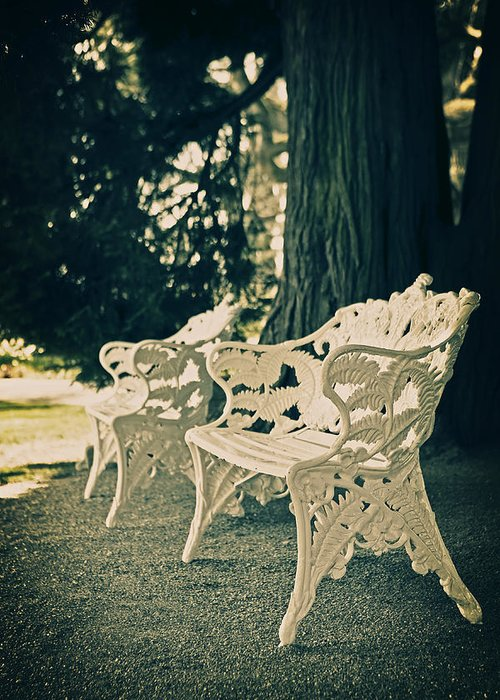 Castle Park Greeting Card featuring the photograph Benches by Joana Kruse