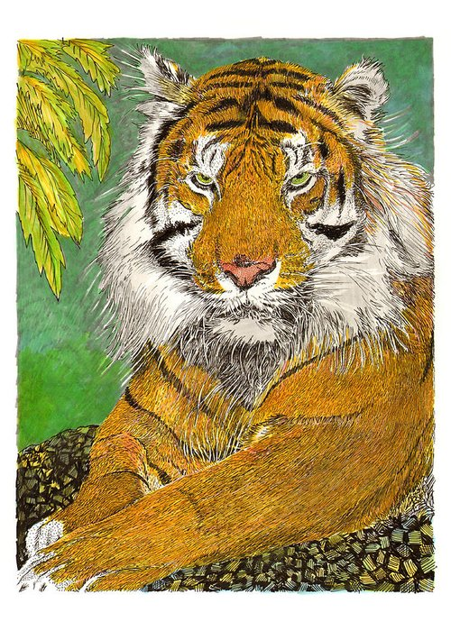 Framed Art Prints Of The Bengal Tiger Greeting Card featuring the painting Bengal Tiger With Green Eyes by Jack Pumphrey