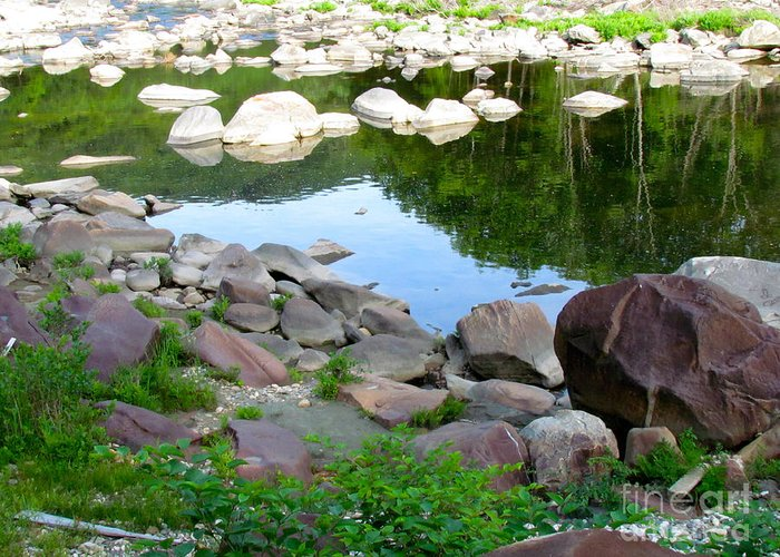 Reflection Greeting Card featuring the photograph Beyond The Potholes by Randi Shenkman