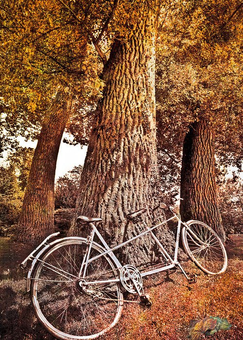 Fall Greeting Card featuring the photograph Bicycle Built For Two by Debra and Dave Vanderlaan