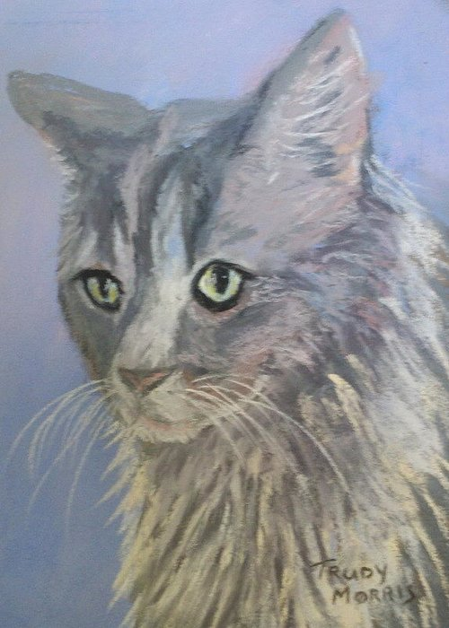 Pet Greeting Card featuring the painting Big Boy by Trudy Morris