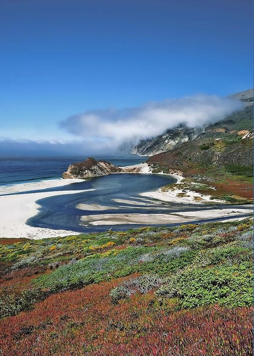 Big Sur Greeting Card featuring the photograph Big Sur by Renee Hardison
