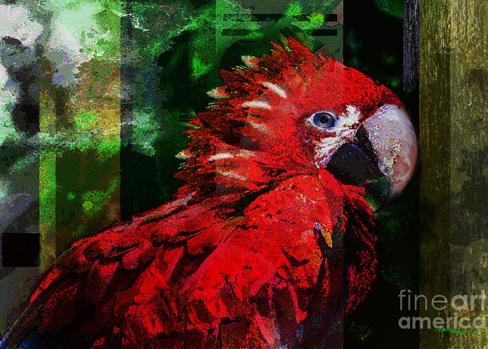 Birds Greeting Card featuring the mixed media Bird Of Exotic Color by Christine Mayfield