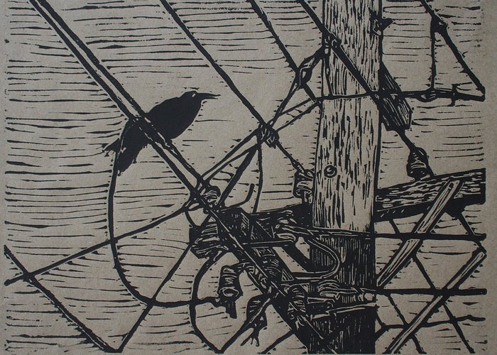 Bird Greeting Card featuring the drawing Bird On A Wire by William Cauthern