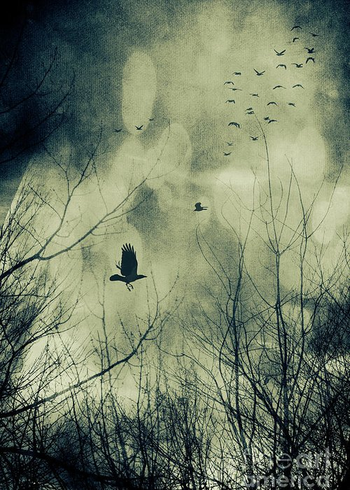 Atmosphere Greeting Card featuring the photograph Birds In Flight Against A Dark Sky by Sandra Cunningham