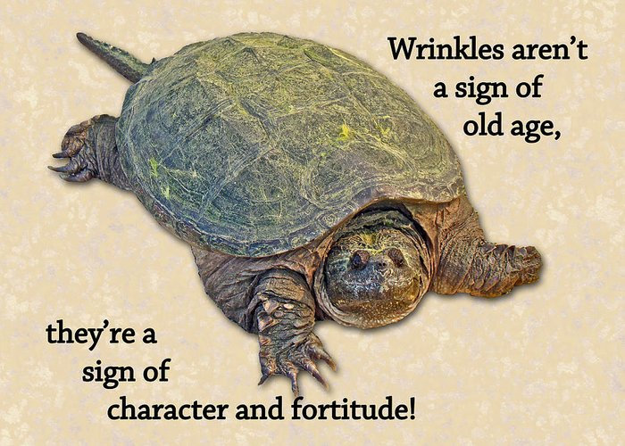 Birthday Greeting Card Featuring The Photograph American Snapping Turtle By Mother Nature
