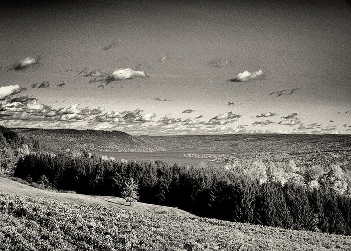 Keuka Lake Greeting Card featuring the photograph Black And White Above The Vines by Joshua House