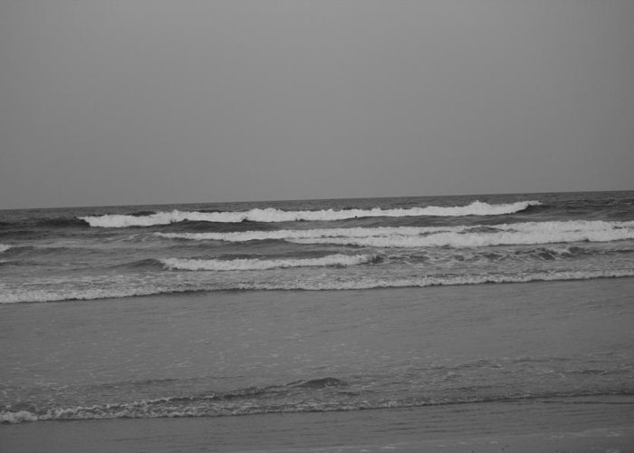 Beach Greeting Card featuring the photograph Black And White Beach by Rod Andress