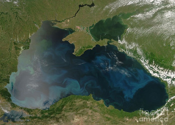 Black Sea Greeting Card featuring the photograph Black Sea Phytoplankton by Nasa
