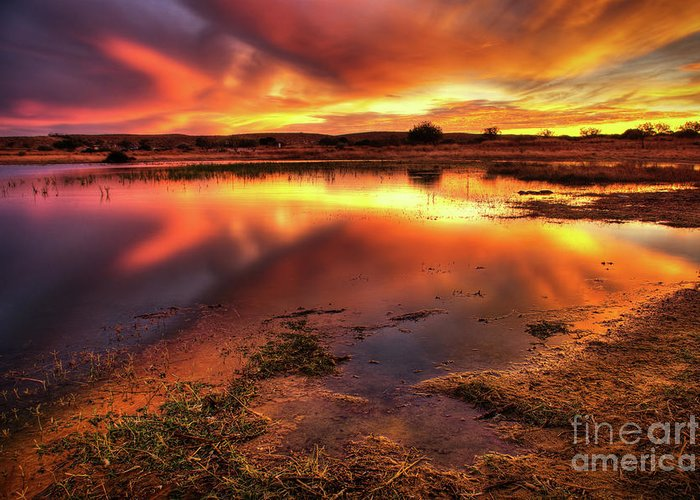 Air Greeting Card featuring the photograph Blazing Sky by Carlos Caetano