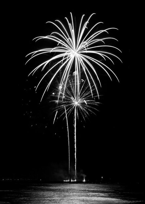 Fireworks Greeting Card featuring the photograph Blooming In Black And White by Bill Pevlor