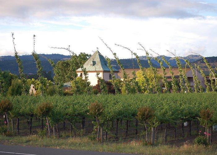 Blowing Grape Vines Vineyards Rustic House Winery Napa California Ca Wine Greeting Cards