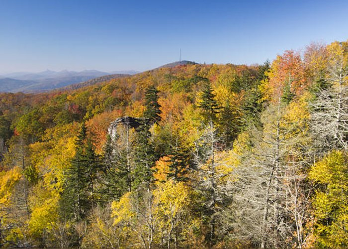 Blue Ridge Parkway In Fall Greeting Cards