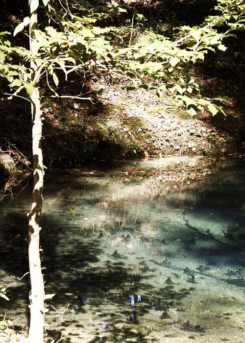 Water Greeting Card featuring the photograph Blue Springs by Linda A Waterhouse