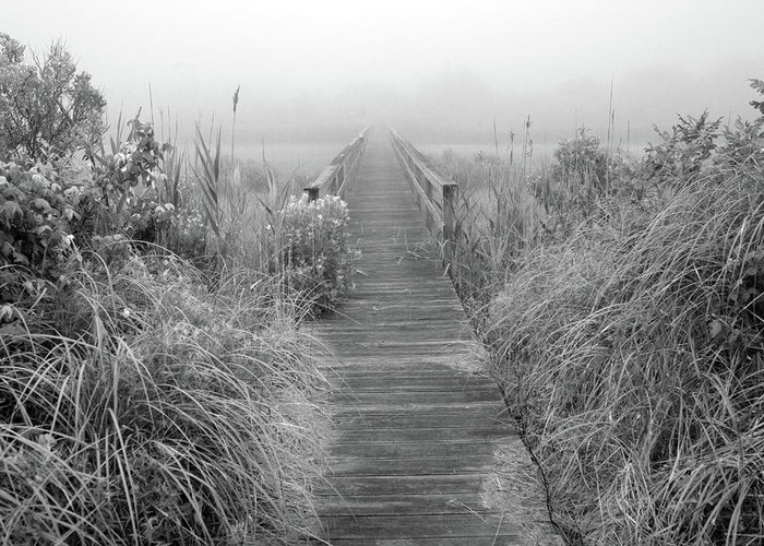 Quogue Wildlife Preserve Greeting Card featuring the photograph Boardwalk In Quogue Wildlife Preserve by Rick Berk