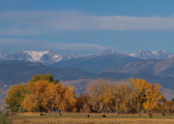 'front Range' Greeting Card featuring the photograph Boulder County Colorado Continental Divide Autumn View by James BO Insogna