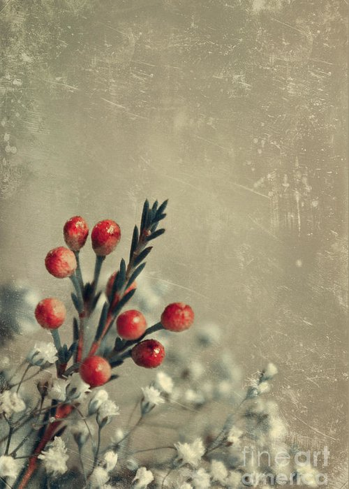 still Life Photographs Greeting Card featuring the photograph Bouquetterie by Aimelle
