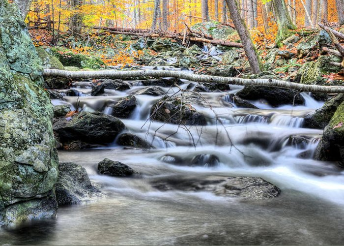 Cunningham Falls Greeting Card featuring the photograph Bridges by JC Findley