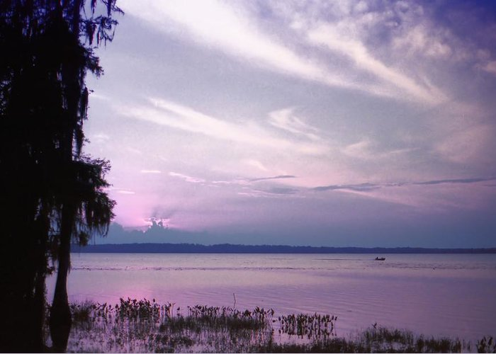 Blue Greeting Card featuring the photograph Brilliant Everglades Sunset by Lynnette Johns