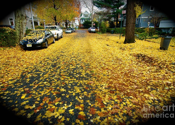 Fall Leaves Greeting Card featuring the photograph Brooklyn New York by Mark Gilman
