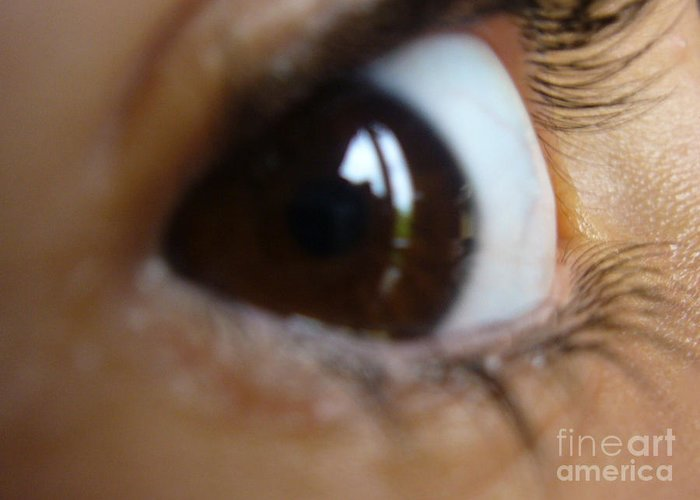 Brown Greeting Card featuring the photograph Brown Eyed Girl by Donna Frasca