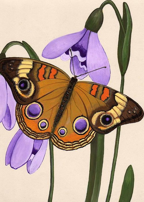 Butterfly Greeting Card featuring the painting Buckeye by Jeanne Rehrig