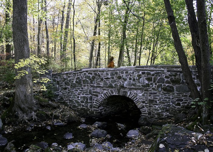 Autumn Greeting Card featuring the photograph Bucks County Stone Bridge by Cathy Brown