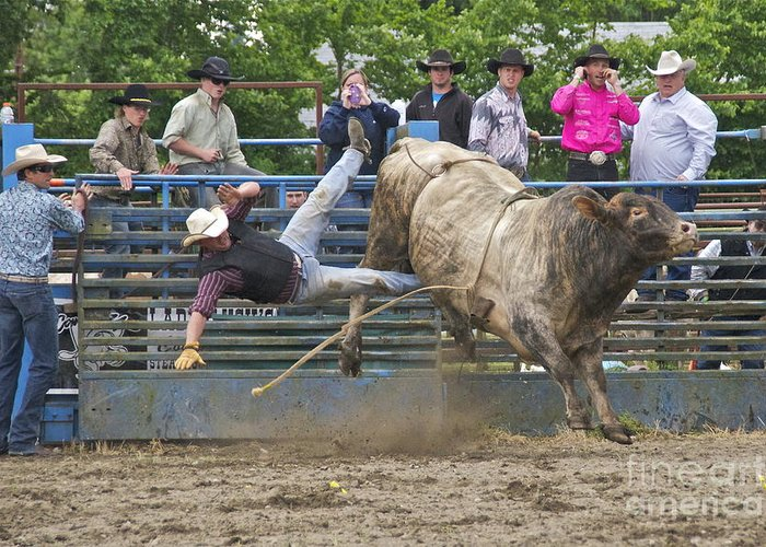 Photography Greeting Card featuring the photograph Bull 1 - Rider 0 by Sean Griffin