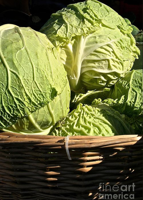 Outdoors Greeting Card featuring the photograph Cabbage Heads by Susan Herber