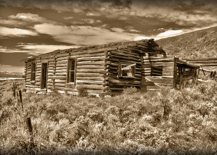 House Greeting Card featuring the photograph Cabin Fever by Shane Bechler
