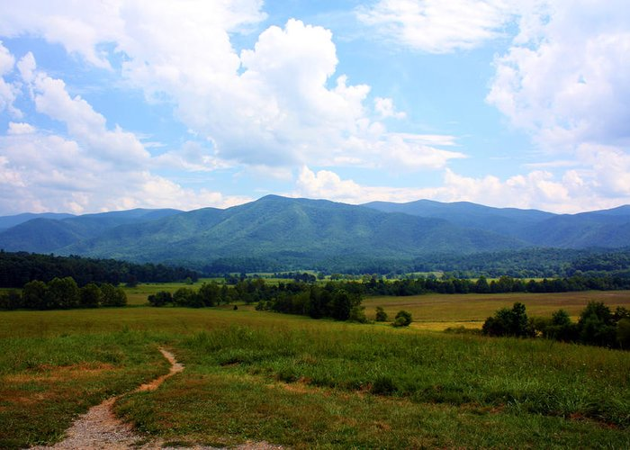 Cades Cove Greeting Card featuring the photograph Cades Cove by Susie Weaver