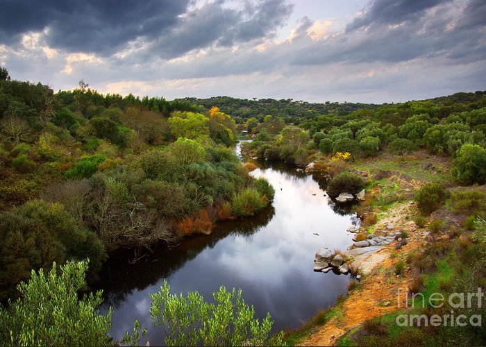 Atmosphere Greeting Card featuring the photograph Calm River by Carlos Caetano